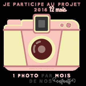 projet_12mois-1