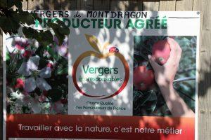 agriculteur bledina pommes