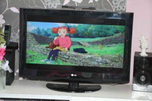 mary et la fleur de la sorcière film d'animation enfant