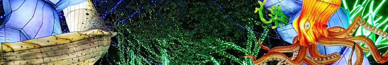 festival lumières sauvages thoiry