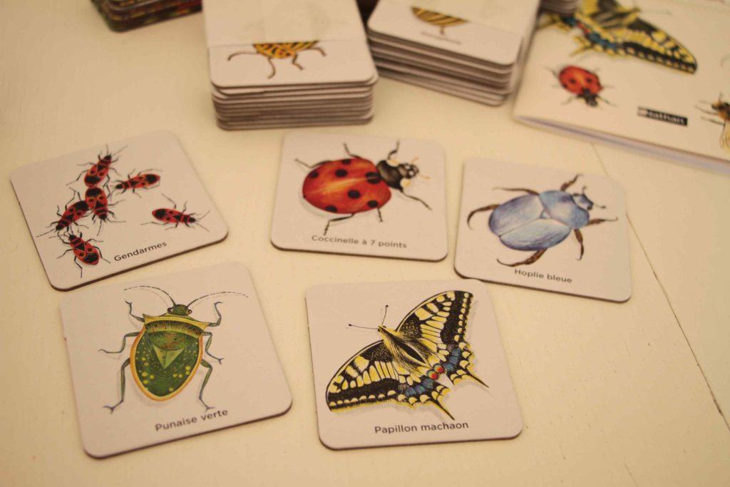 mémo des insectes nathan